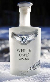 WHIE OWL