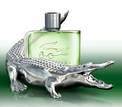 LACOSTE FOR HIM